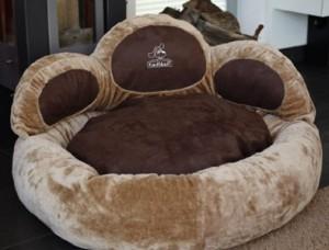lit luxe chien